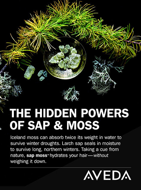 Hidden-Powers-of-SAP-and-MOSS